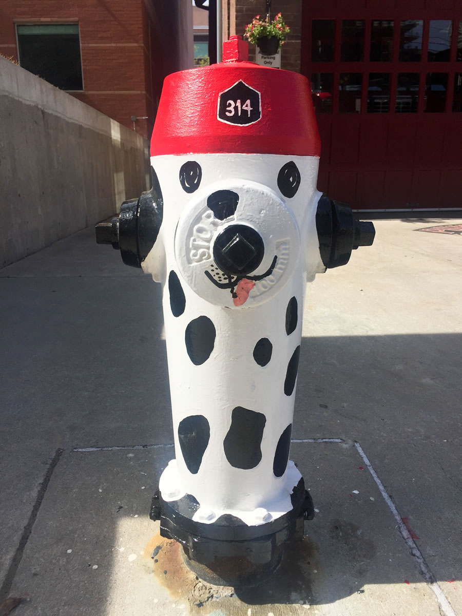 Cute fire hydrant painted with a dog