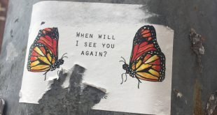 Butterfly Project Street Art