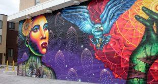 Shalak Attack Aerosol Murals