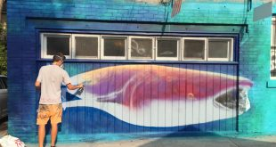 Nick Sweetman Whale Shark Mural Stating