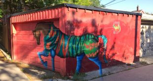 Toronto Street Art Graffiti Garage Door Photo