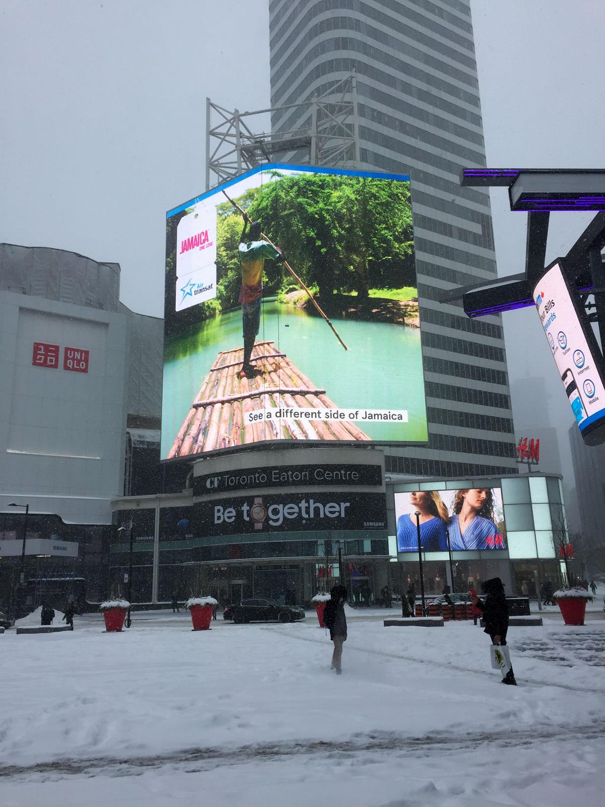 Toronto Winter Photo